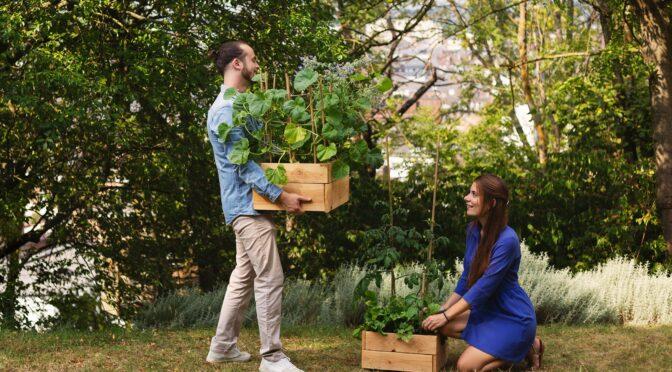Pas la main verte? Ton Pot' s'occupe de faire pousser vos herbes et légumes
